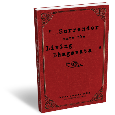 SmartBook02_surrender-s